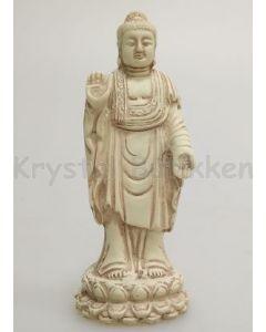 Buddha-Transmission