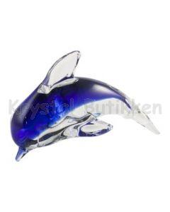 delfin og søstjerne