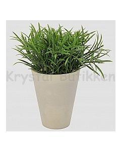 Grøn busk A