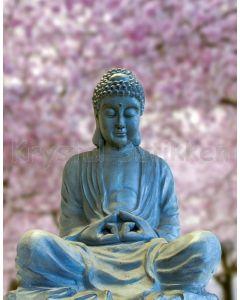 Notesbog BUDDHA SMILE