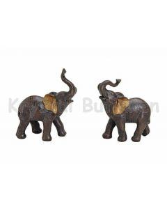 Elefant med gyldne ører