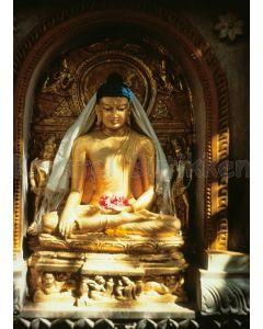 Notesbog - GOLDEN BUDDHA