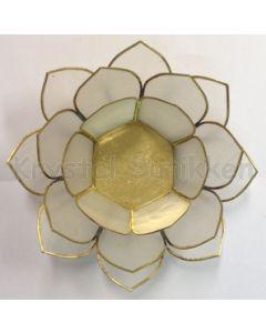 lotus lampe grøn