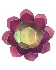 lotus lilla