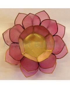 lotus grå