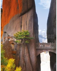 Notesbog - MOUNTAIN BRIDGE