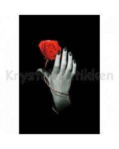 Notesbog - ROSE HAND