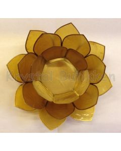 lotus stor lys gul