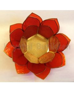 lotus gul stor